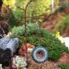 Mini Tyre Swing on Tree