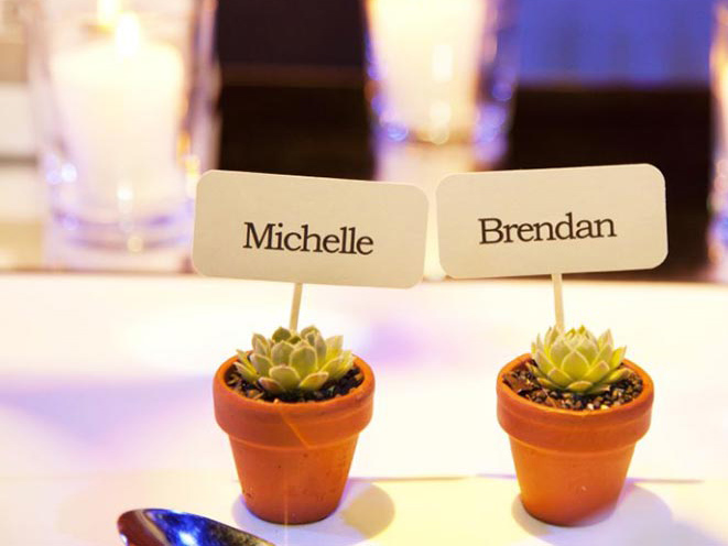 Succulent wedding place holders