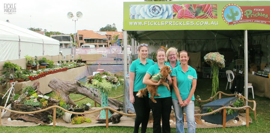 Fickle Prickles Exhibit at PGF2016
