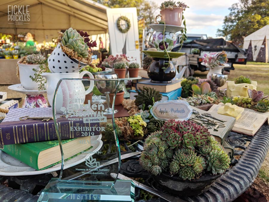 Fickle Prickles Display at the Perth Garden Festival 2019