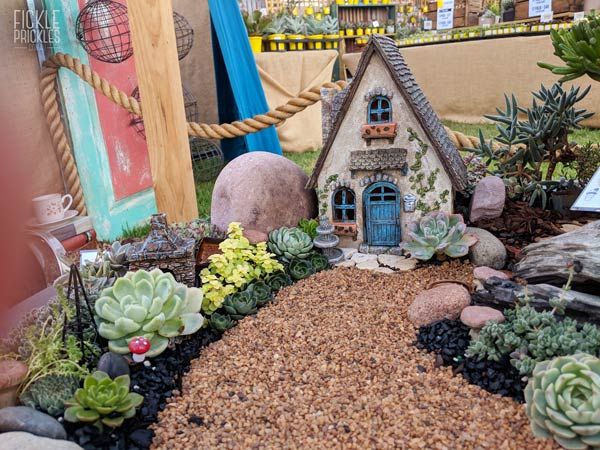 Succulent miniature fairy garden with Fairview House