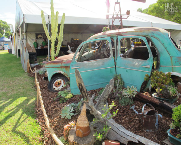 Succulent Car Display - Fiat