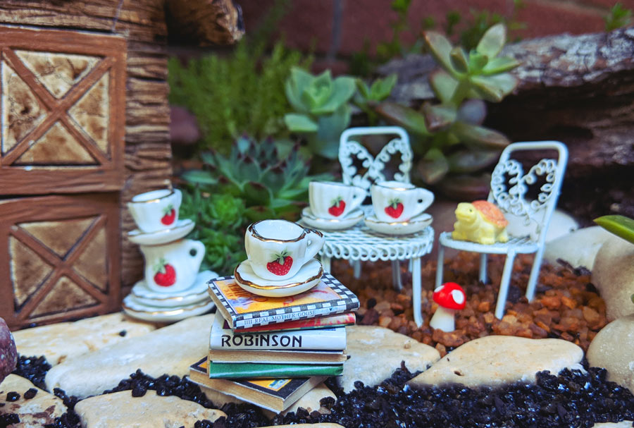 Succulent Miniature Garden Mad Hatter Tea Party