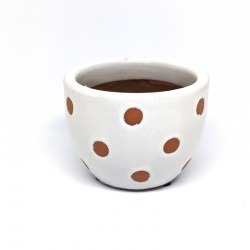 Mini Cup Planter Pot 9cm - Dots