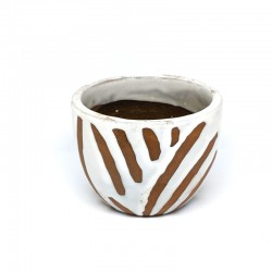 Mini Cup Planter Pot 9cm - Zebra