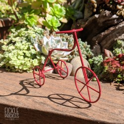 Mini Tricycle Bike - Red