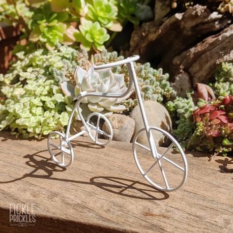 Mini Tricycle Bike - White