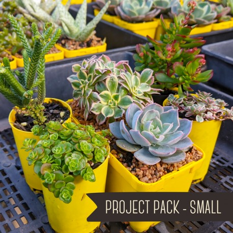 Project Pack - Small