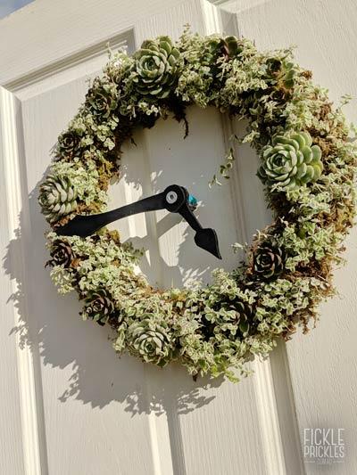 A succulent wreath clock