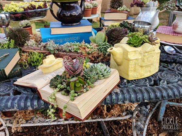 Succulent Mad Hatter Tea Party Table