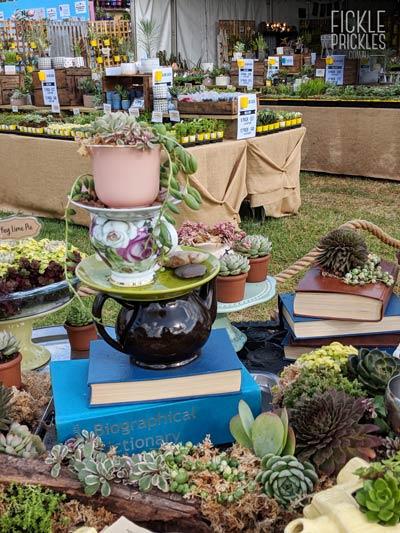 Succulent Tea Cup Stack