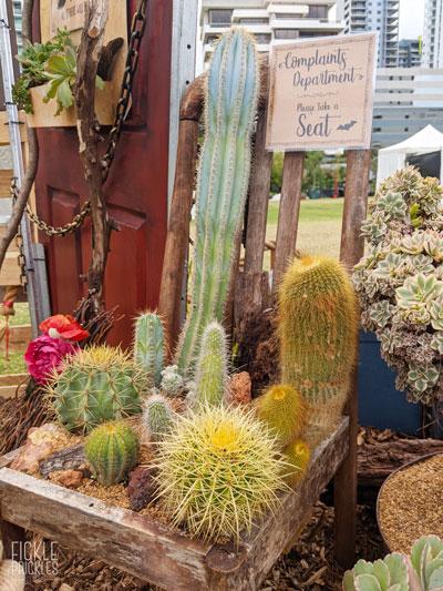 Cactus Chair - Complaints Dept