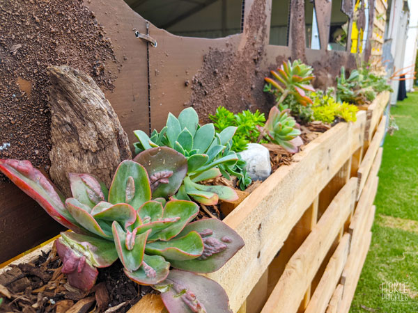 Planted Pallets with Rusted Sign