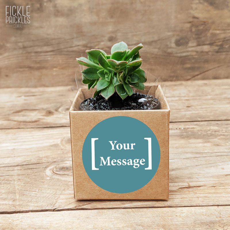 stickers for succulent wedding gifts